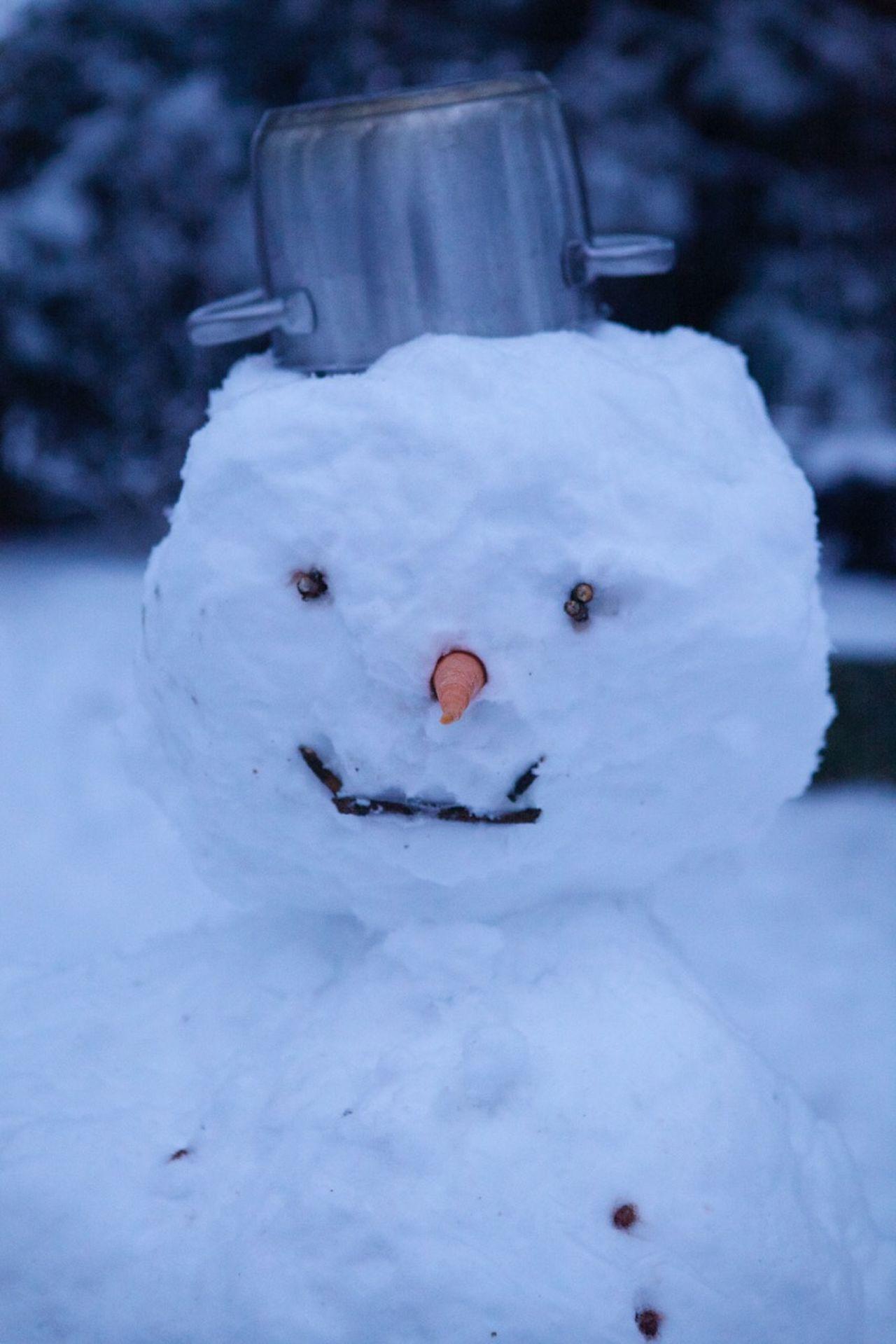 Beautiful stock photos of snowman, Art, Art And Craft, Carrot, Close-Up