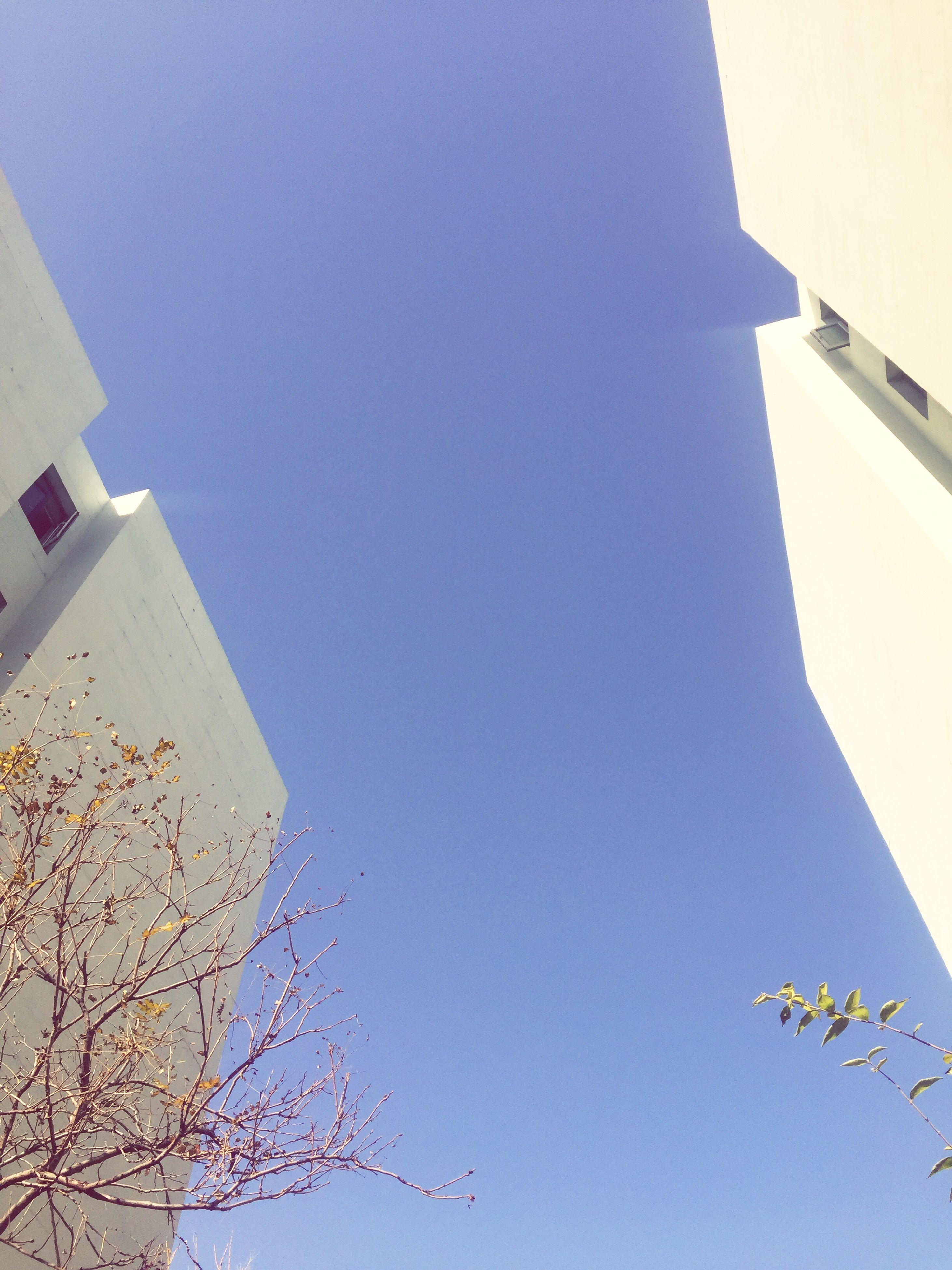 building exterior, built structure, low angle view, architecture, blue, clear sky, sky, outdoors, day, no people, nature