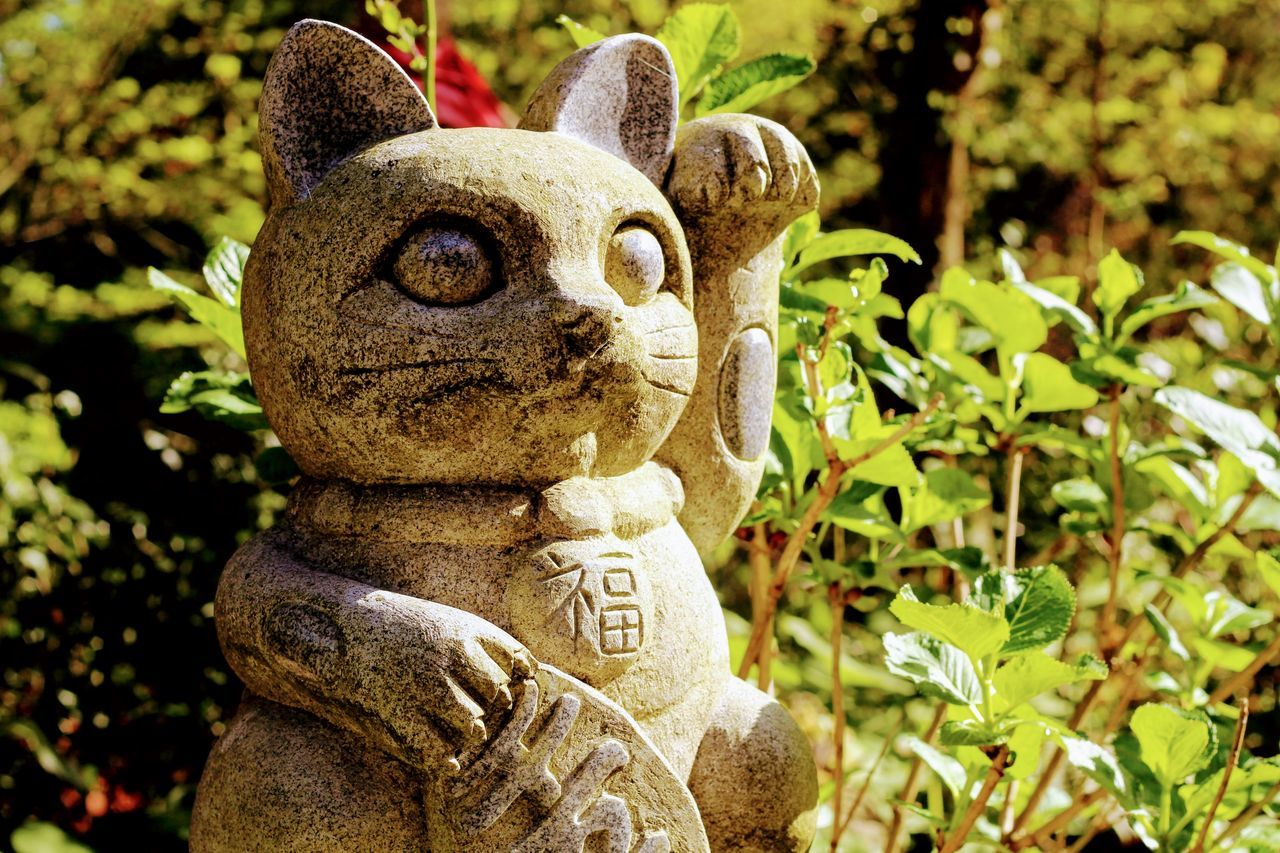 招き猫 Manekineko Cat Close-up Day Manekineko Nature No People Outdoors Sculpture Statue Tree 招き猫