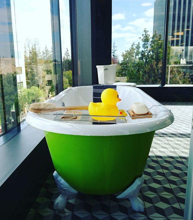 Modern Window Water Houzzoffice Office Houzz Startup San Francisco California Palo Alto Bathroom Bathtub Duck