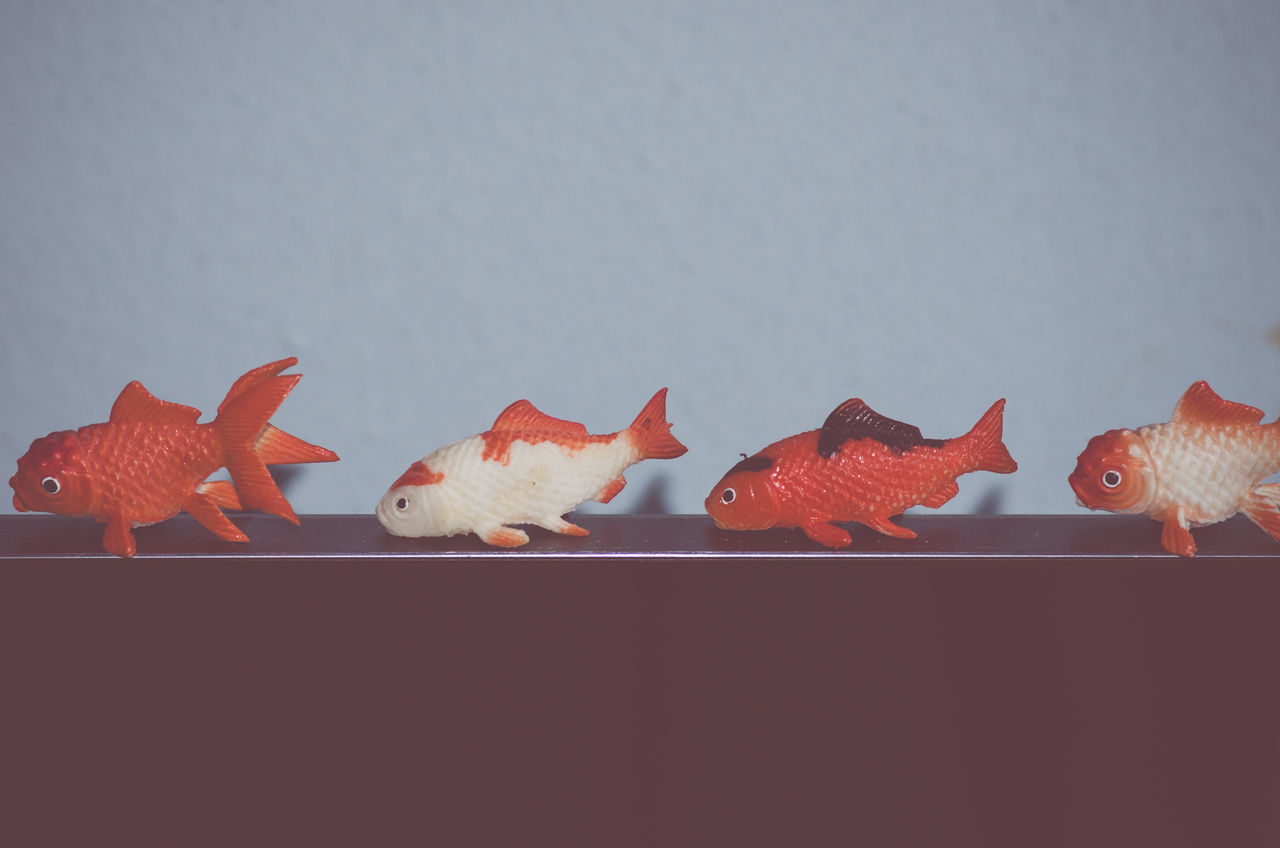 toy fishes in a row - abstract backgrounds Animal Themes Animals In The Wild Autumn Beginnings Botany Close-up Fish Fishes Fragility Freshness Ideas Lined Up In A Row No People Orange Color Red School Of Fish Sea Life Set Of Swimming Toys Underwater Water Wildlife