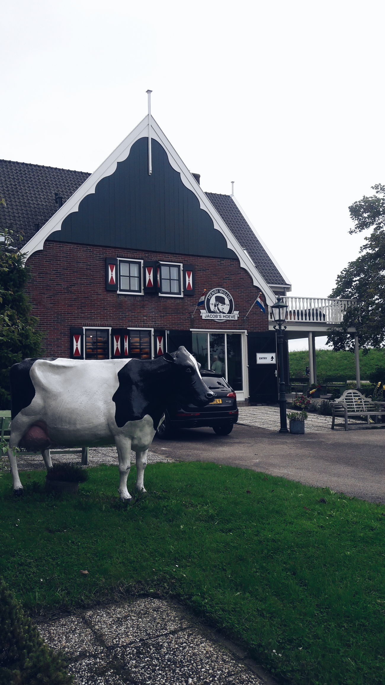 Holland Holanda Paisesbajos Farm Cow Cheese Factory Farmhouse Cheese Holland Cheese Travel Photography Travel Destinations Travel Eurotrip