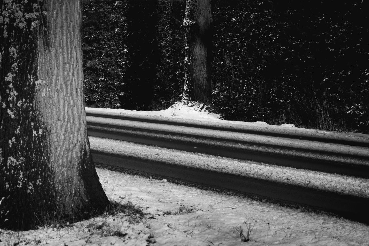 way home Blackandwhite Close-up Cold Dark Day Monochrome Nature No People Outdoors Road Tree Winter