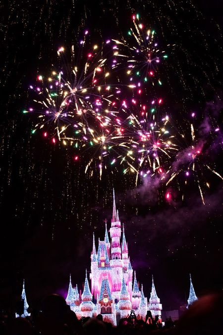 Disney world orlando florida Celebration Night Illuminated Christmas Tree Christmas Christmas Decoration Built Structure Christmas Lights Sky Architecture Tree No People Outdoors Firework Display Christmas Ornament