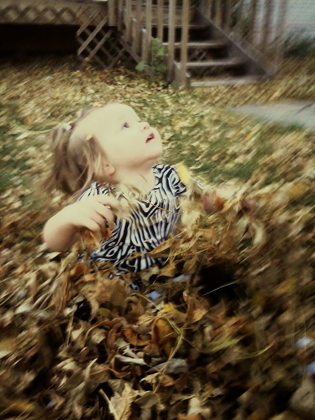 Capturing Motion Outdoors Day Beauty In Nature Kids Kids being kids Autumn Leaf Tree Enjoying Life Leaves Playtime Kidsphotography