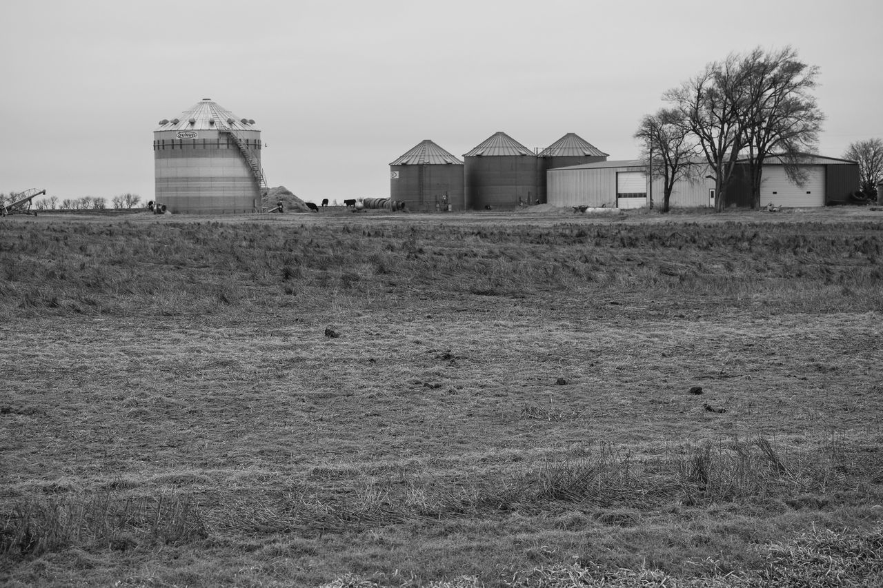 Visual Journal February 2017 Thayer County, Nebraska Agriculture America Built Structure EyeEm Best Shots EyeEm Best Shots - Landscape EyeEm Gallery Farm Life Farmland Field Getty Images MidWest Minimal Nebraska No People Off The Beaten Path Oregon Trail Photo Diary Rural America Rural Exploration Rural Landscape Rural Scenes Rurex Small Town Stories Storytelling Visual Journal