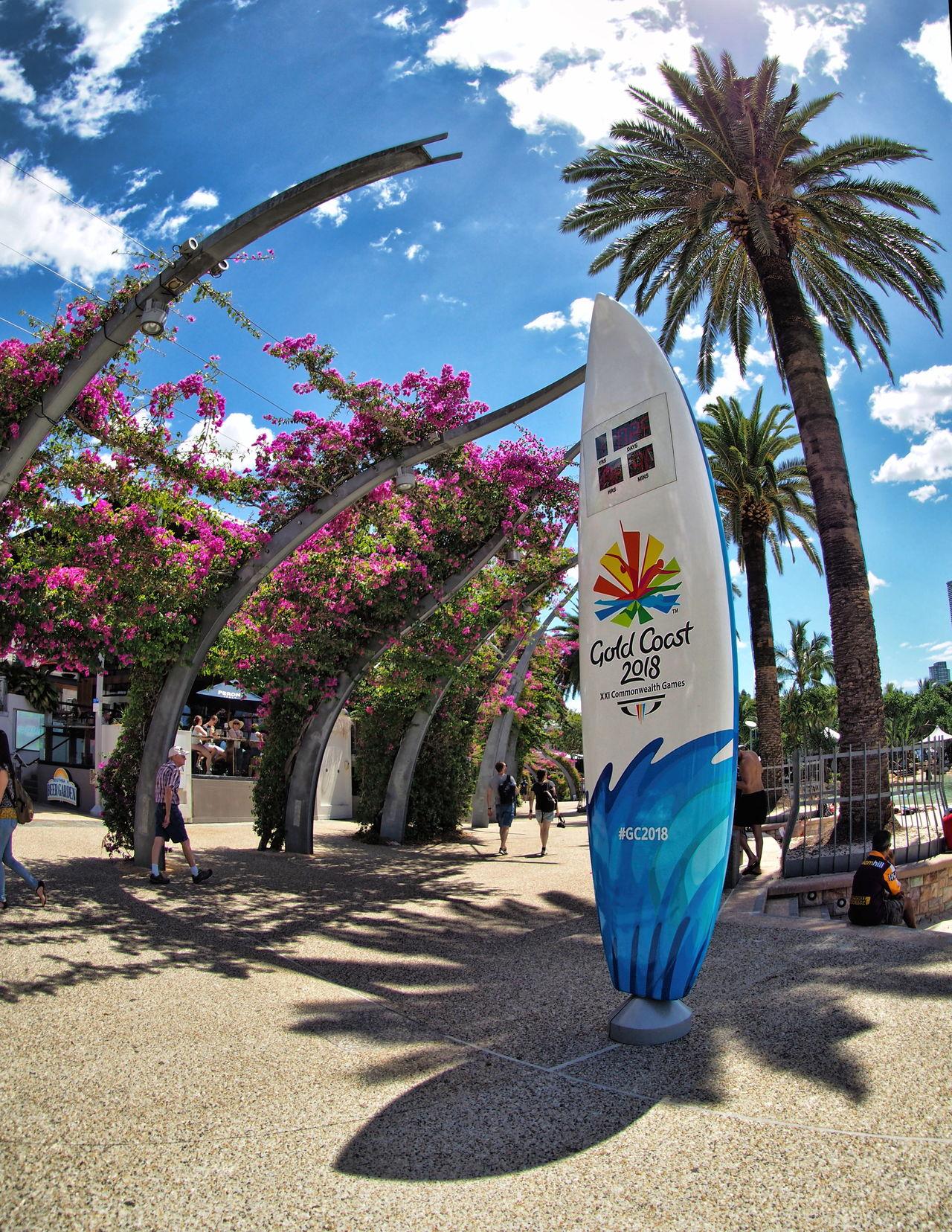 Australia Beauty In Nature Brisbane Brisbane Australia Day Fisheye Flowers Growth Nature No People Outdoors Paths Shadow Sunlight Tree