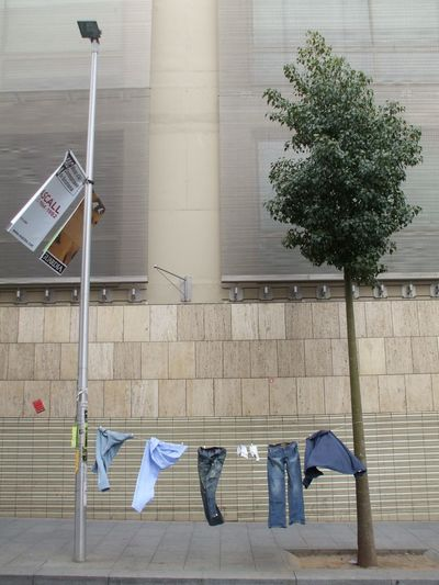 Windlife Barcelona City Tree Clothes Hanging Clothes Street Street Life Adapted To The City