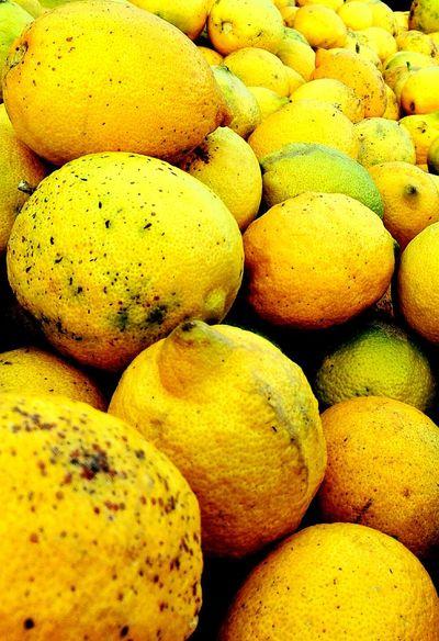 Yellow Citron Citron Vert Freshness Photography ThemesCanonphotography Nikon D5200 Germany🇩🇪 Berlin Algeria Bbacity