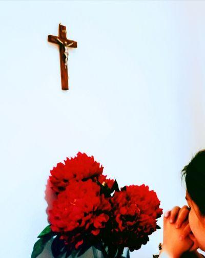 silence in peace Pray EyeEm Ready   Flower Red EyeEmNewHere AI Now