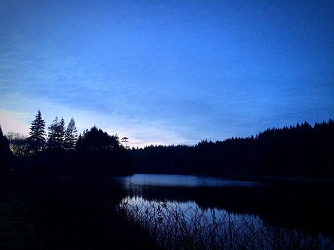 Blue Hour IPS2016Blue Reflections And Water Eveninglight Lakeshore Naturelovers