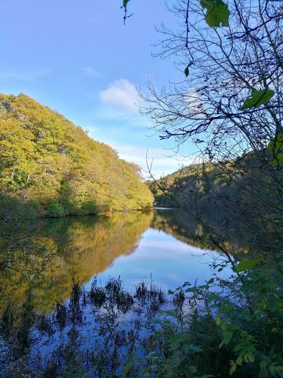 Some amazing Autumn walks to be had this time of year. Autumn Autumn🍁🍁🍁 Walk Walking In The Woods Green Brown Water Blue Sky Outdoors Tranquility Beauty In Nature Water Reflections Forest Forestwalk Trees Huawei P9 Leica