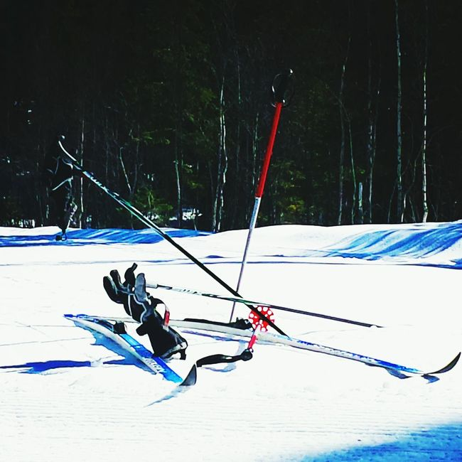 Skiing Relaxing That's Me Check This Out Enjoying Life Refrigerator Totaly In Need Of Help