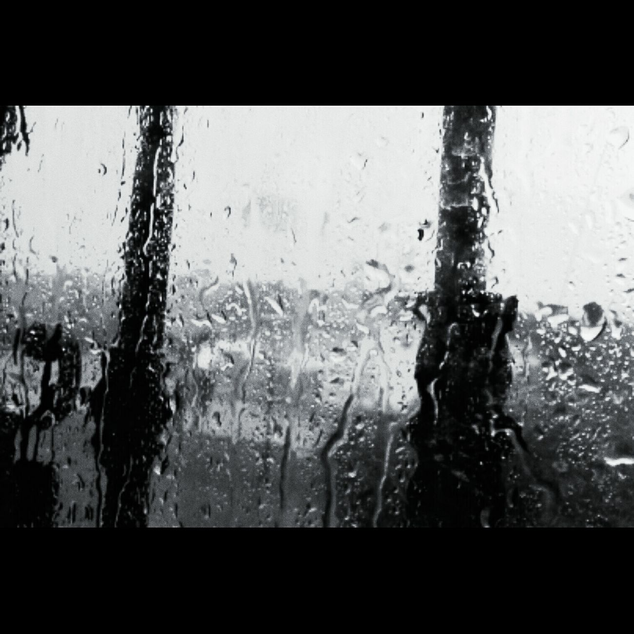 Glass - Material Transparent Window Weather Rain Sky Water Wet Drop Backgrounds Full Frame Car Wash Day No People Tree Indoors  RainDrop Nature Close-up CALI COLOMBIA Rainy Days Picoftheday Love Photography People Photography