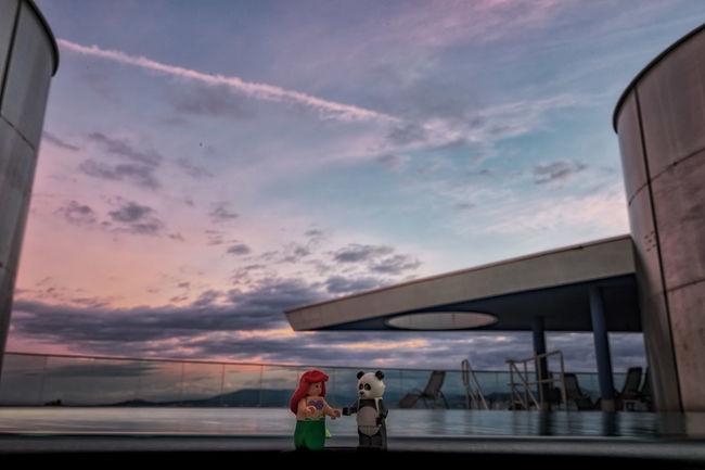 Panda found his best friend Cloud - Sky Cloudy Friendship Legophotography Love Mermaid Panda On Tour Sunset Van Gogh Inspiration