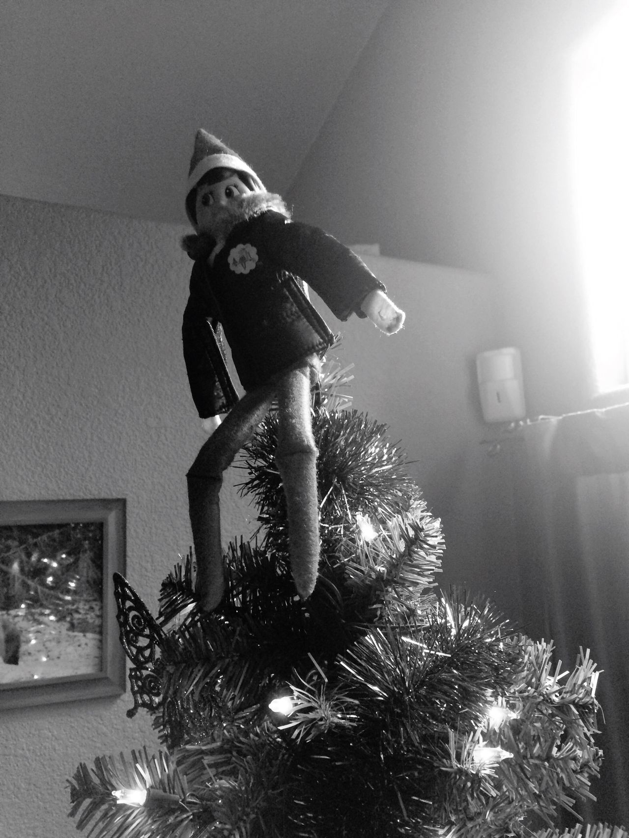 Elfontheshelf Full Length Indoors  One Person Celebration Childhood Christmas Real People People Day Christmas Tree Sunlight Blurring Black And White Elf