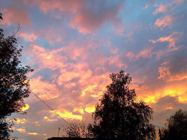 Sunset Sky Cloud - Sky Beauty In Nature Tree Nature Cloud Orange Color