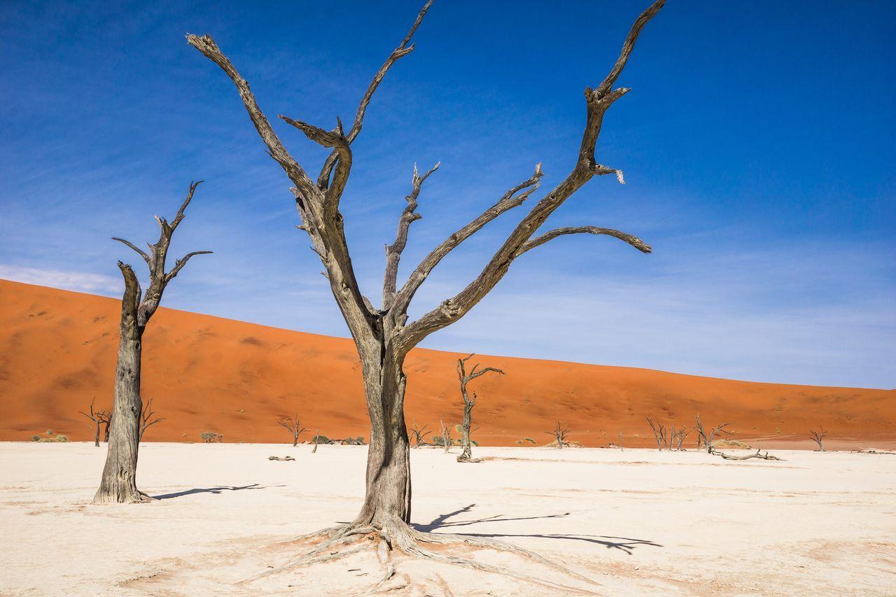 Namibia Landscape Dead Vlei