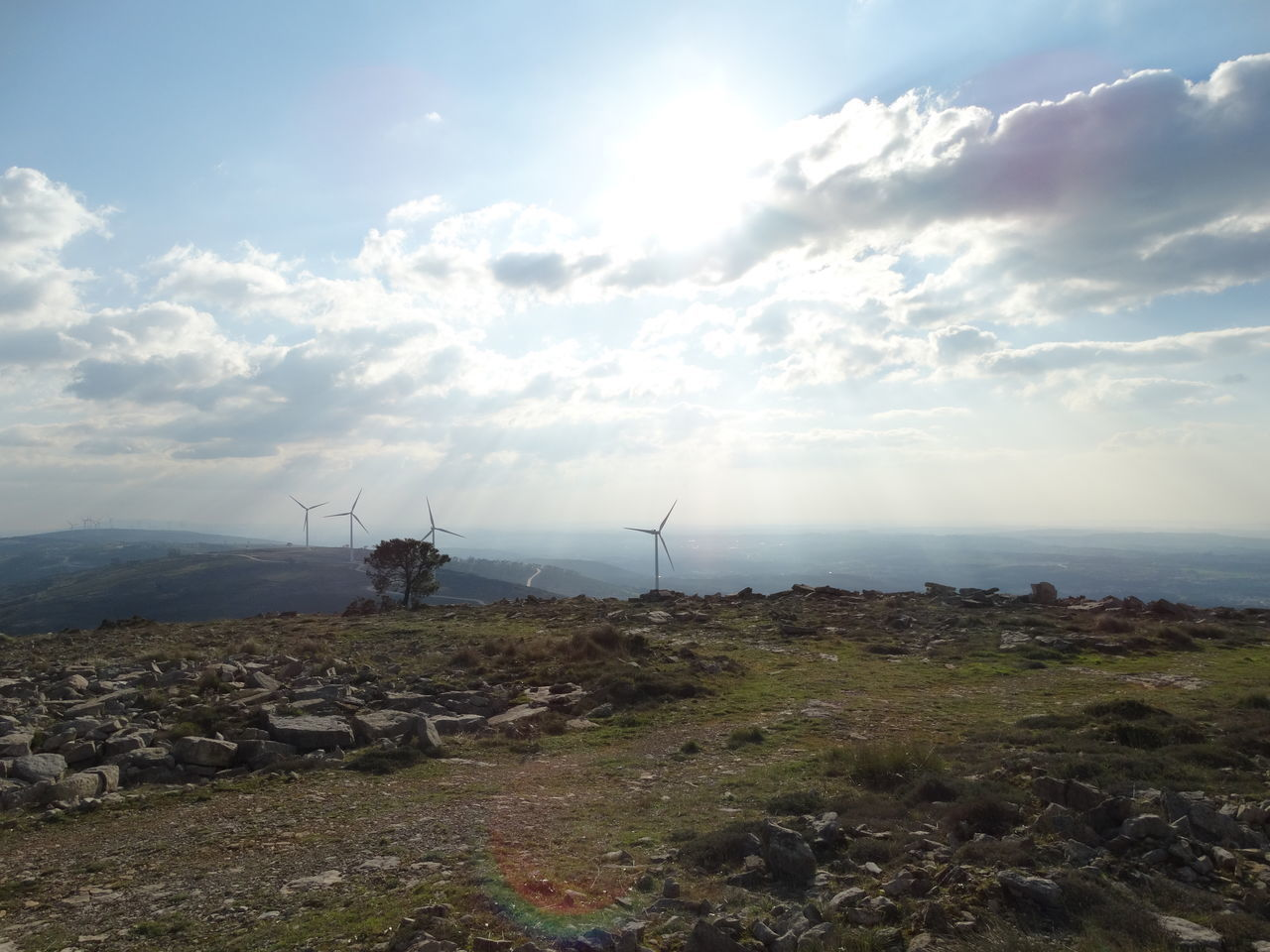 Alternative Energy Beauty In Nature Cloud - Sky Day Industrial Windmill Landscape Nature No People Outdoors Scenics Sky Tranquil Scene Tranquility Wind Power Wind Turbine Windmill