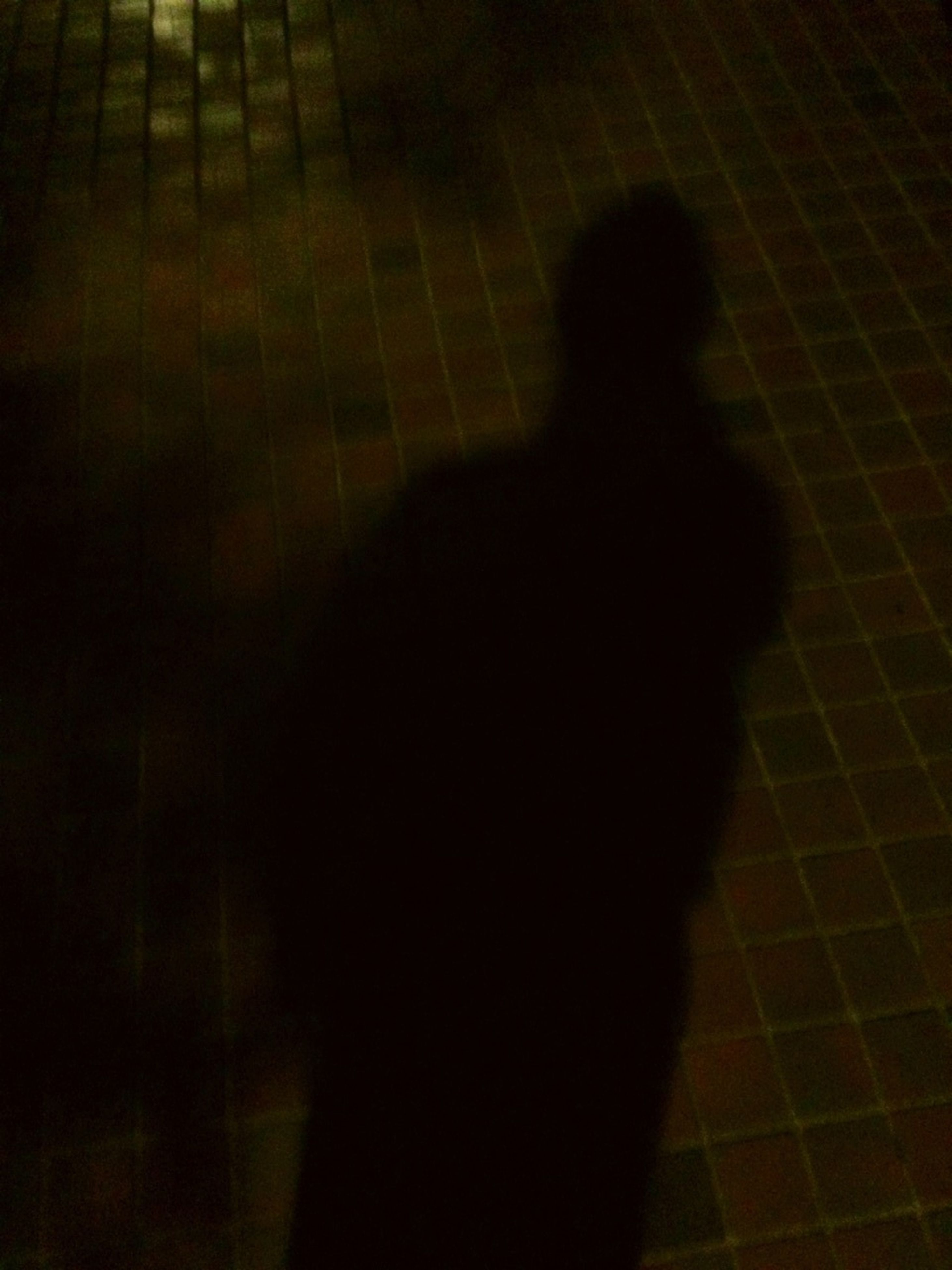 shadow, night, focus on shadow, high angle view, lifestyles, tiled floor, standing, sunlight, silhouette, walking, men, unrecognizable person, indoors, dark, flooring, street, leisure activity, person