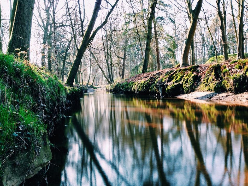 Beautiful stock photos of river, Beauty In Nature, Day, Grass, Heeze
