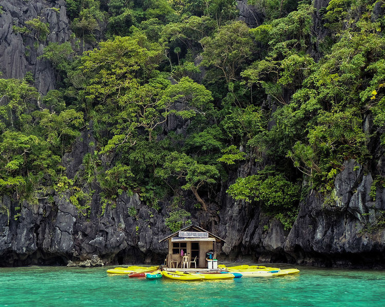 ASIA Philippines Rock Formation Adventure Green Color Kayak Nature No People Outdoors Sea Tranquility Travel Destinations Tree