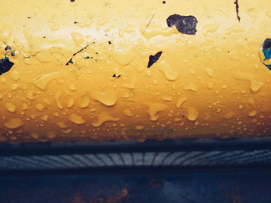 Yellow Raindrops Fragility No People Outdoors Brasiliangallery Detailsseries Brasília - Brazil Water