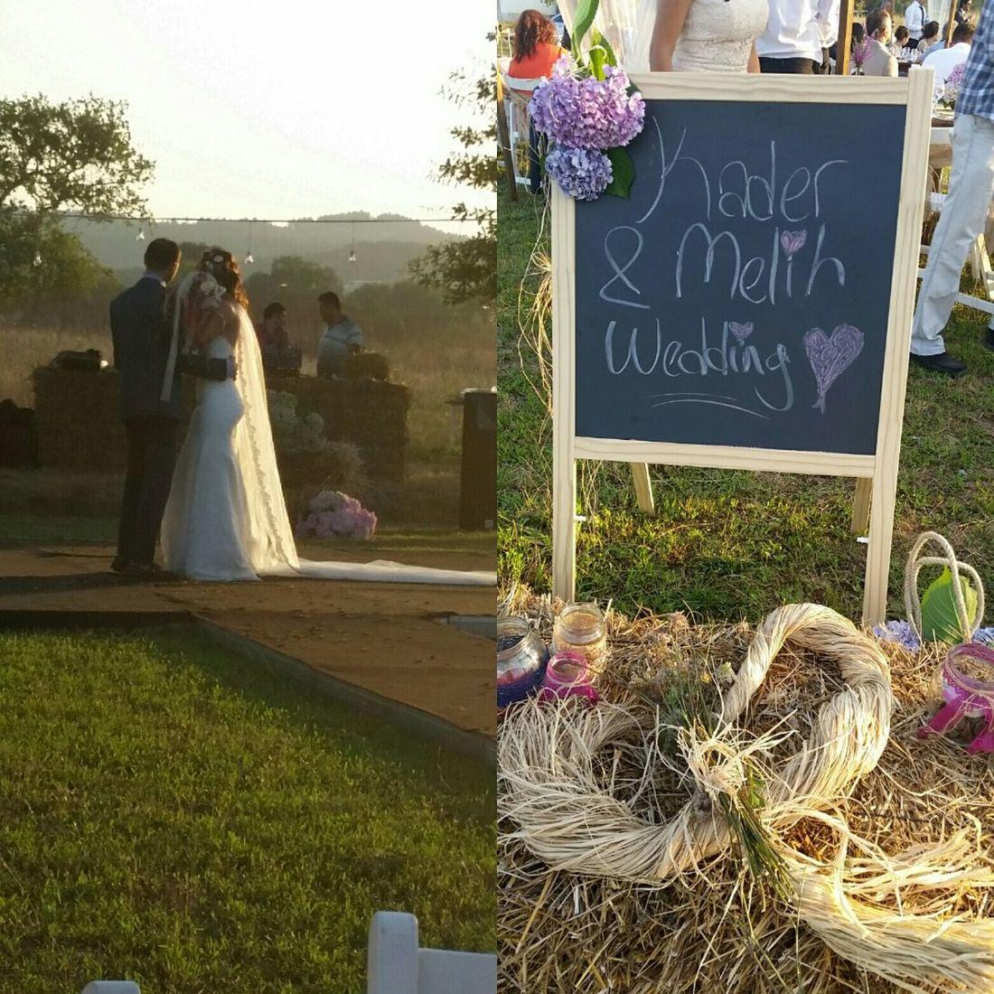 @wedding Gardening Fresh Produce People Watching Excercising Sowing What You Reap