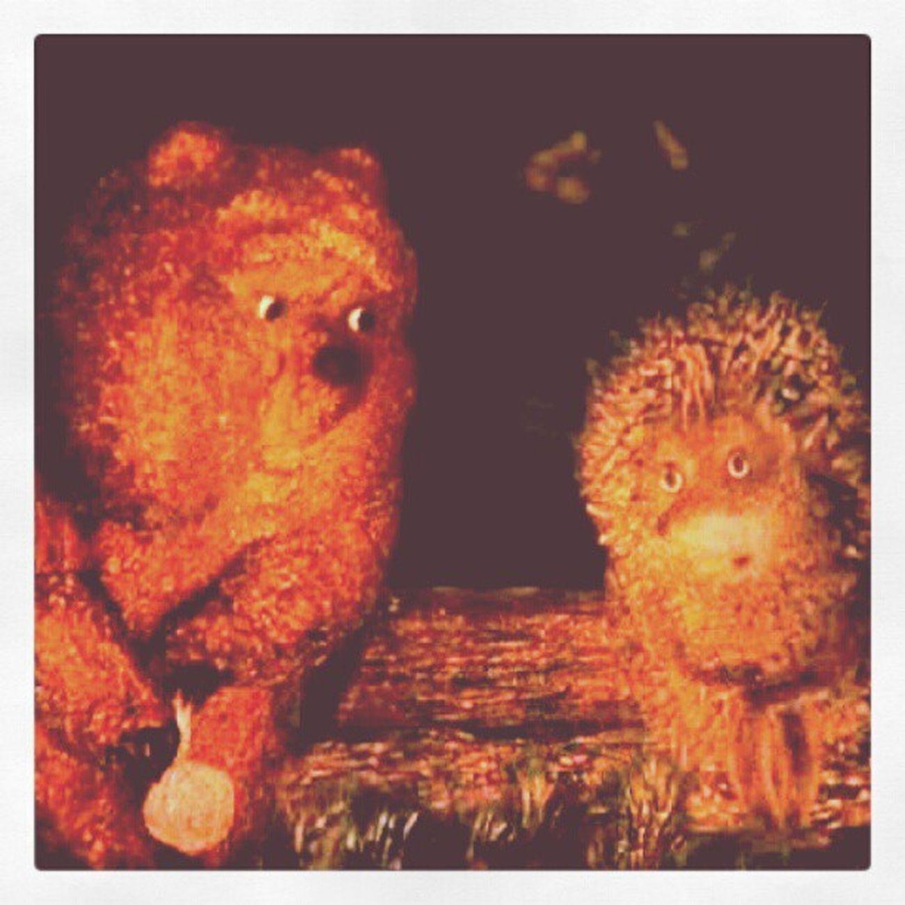 Ежик и медвежонок ежик медведь Multy