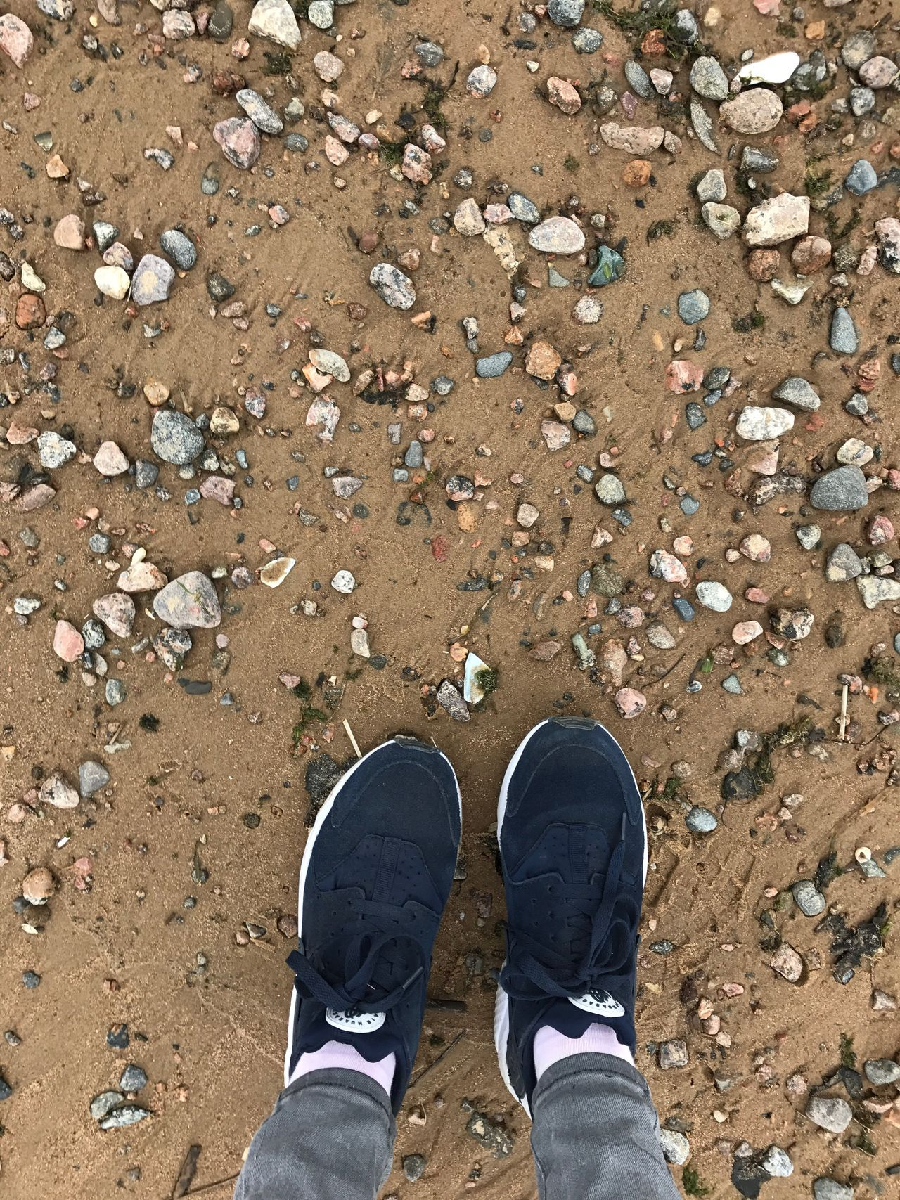Low Section Standing Human Leg Shoe Real People One Person High Angle View Personal Perspective Day Outdoors Human Body Part Directly Above Lifestyles Men One Man Only Nature Close-up Only Men Adult People Wind Beach Time Beach Photography Sandy Beach Rock