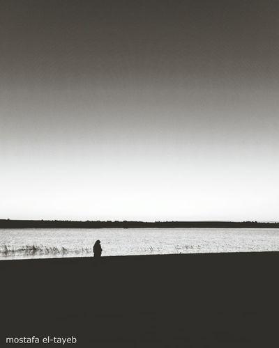 Lake Lake View Lakeview Landscape Landscape_photography Landscape_photography Nikon NIKON D5300 Sigma 17-50mm Egypt Traveling Travel Travelphotography Visit Egypt Fayoom Fayoum Thisisegypt First Eyeem Photo