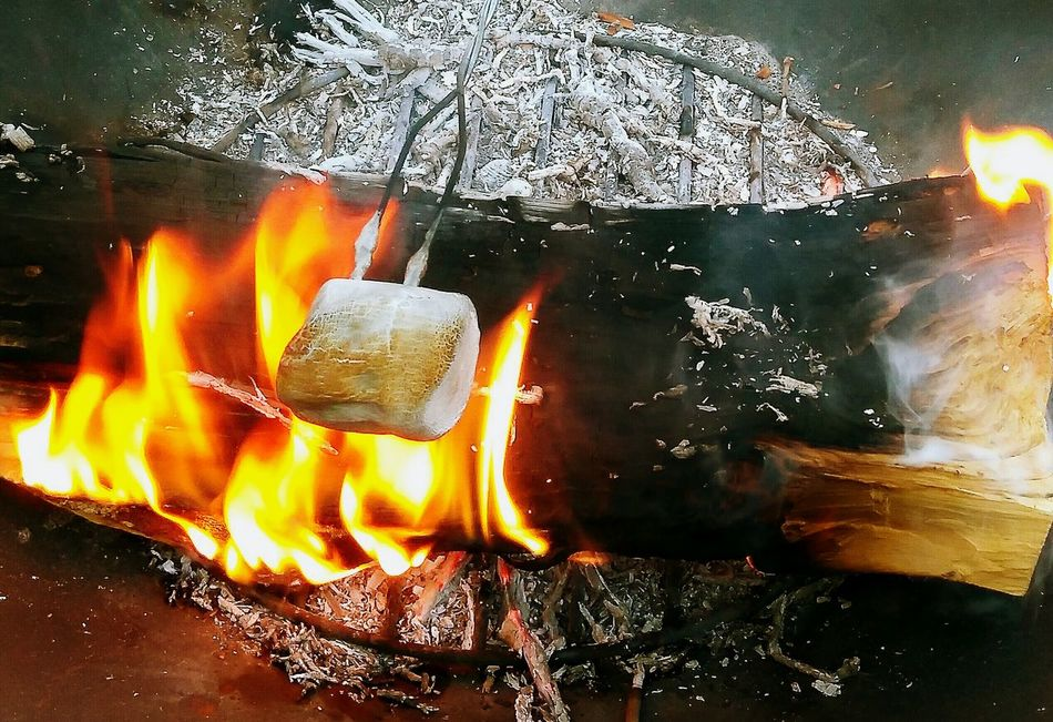 Fire Marshmallow Time!  Marshmallow Roasting No People Firewood Close-up Burning Flame Glowing Outdoors