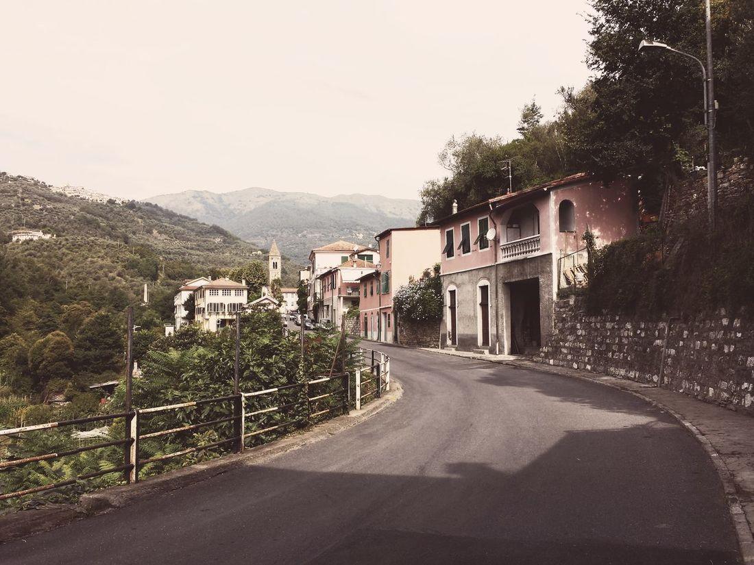 Landscape On The Road Summer Journey