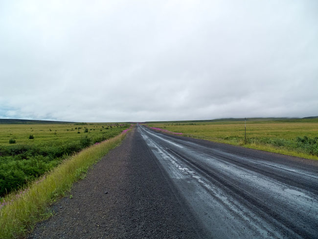 Dempster Highway, Richardson Mountains section Country Road Dempster Highway Empty Road Landscape Nature Road Solitude Travel Destinations Tundra