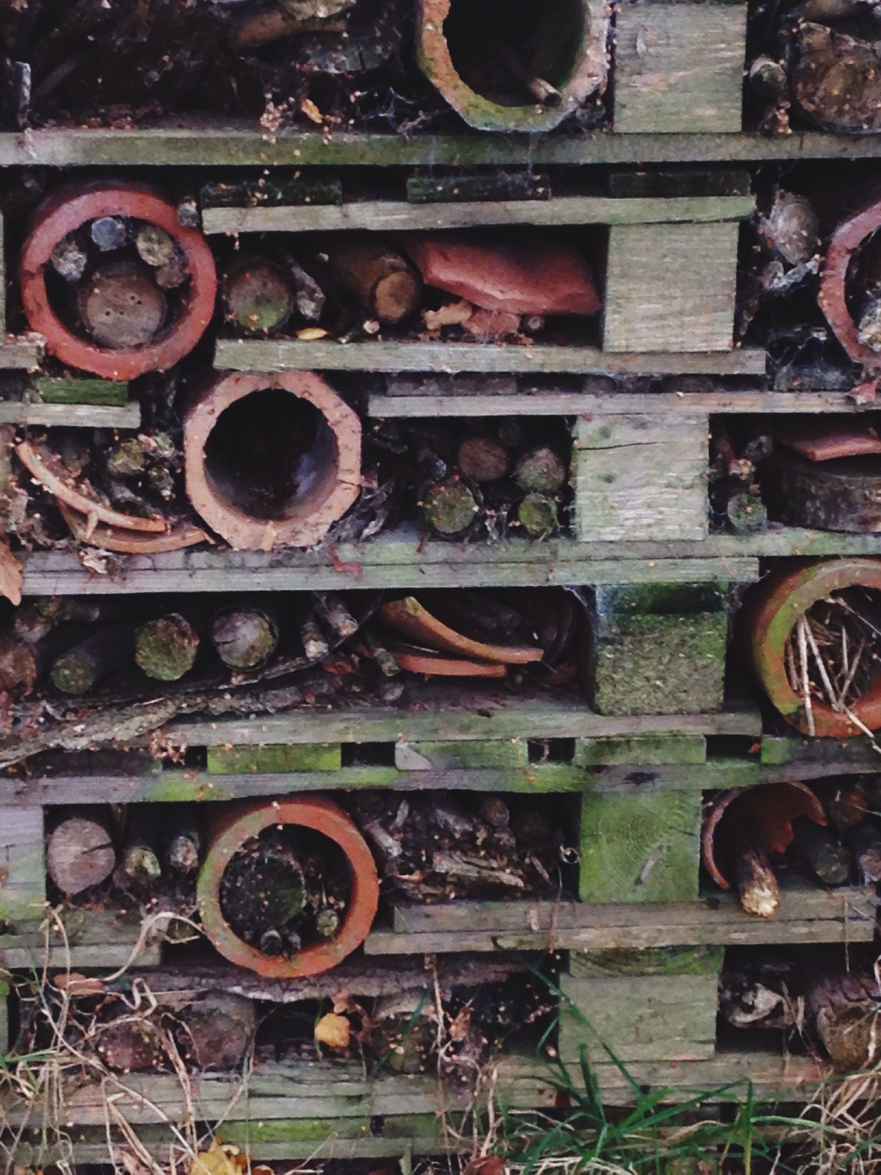 Beth Chatto gardens Insect Hotel Nature Day Architecture Outdoors Built Structure Multi Colored No People Front View