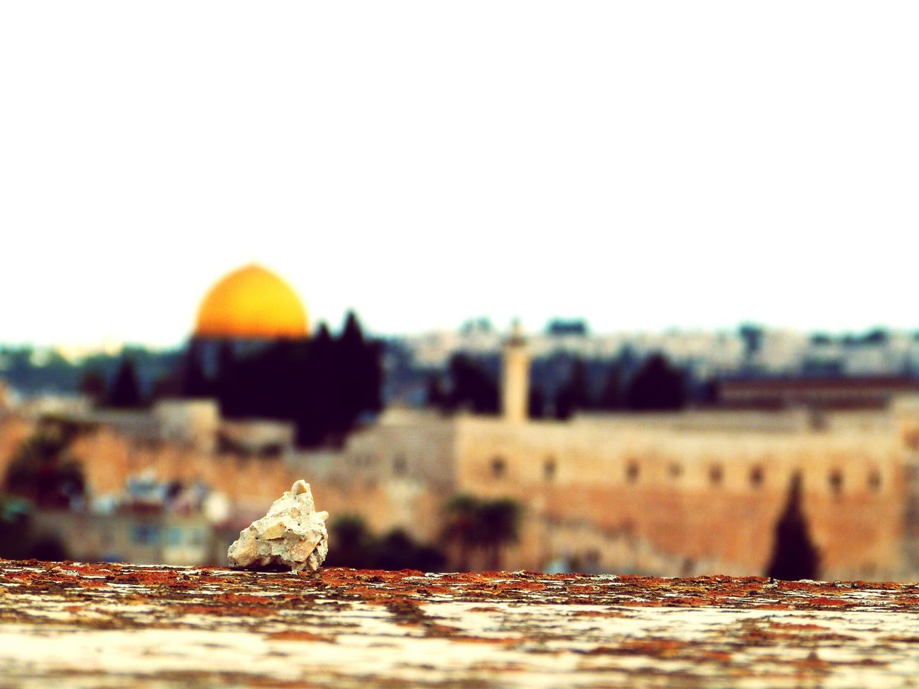 Nature Summer Traveling Rocks Jerusalem Macro Zoom Dôme Du Rocher Detail Dome Of The Rock Temple Mount