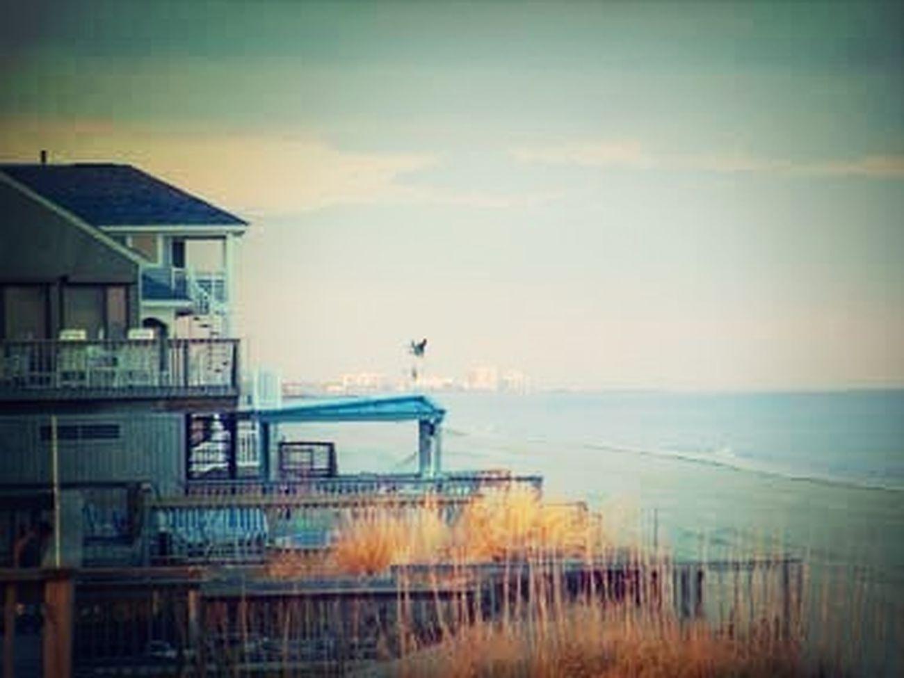 Throwbackk Beach