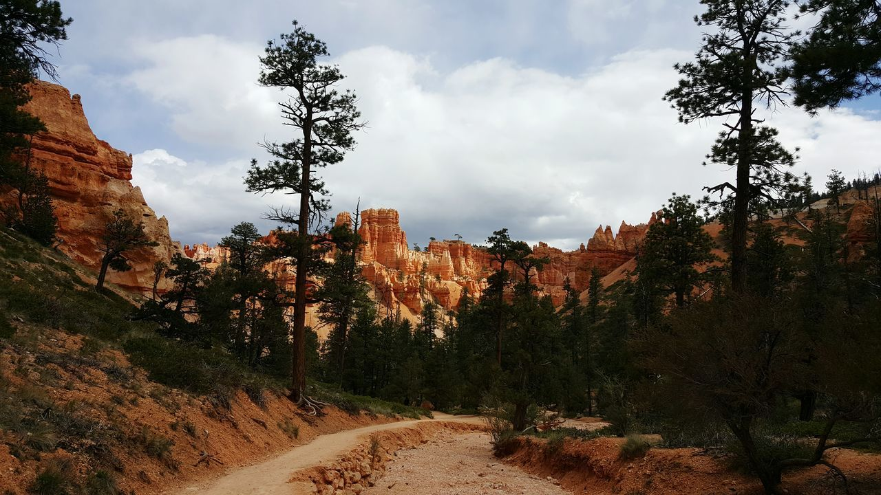 Trail Leading Towards Navajo Loop At Bryce Canyon National Park Against Sky