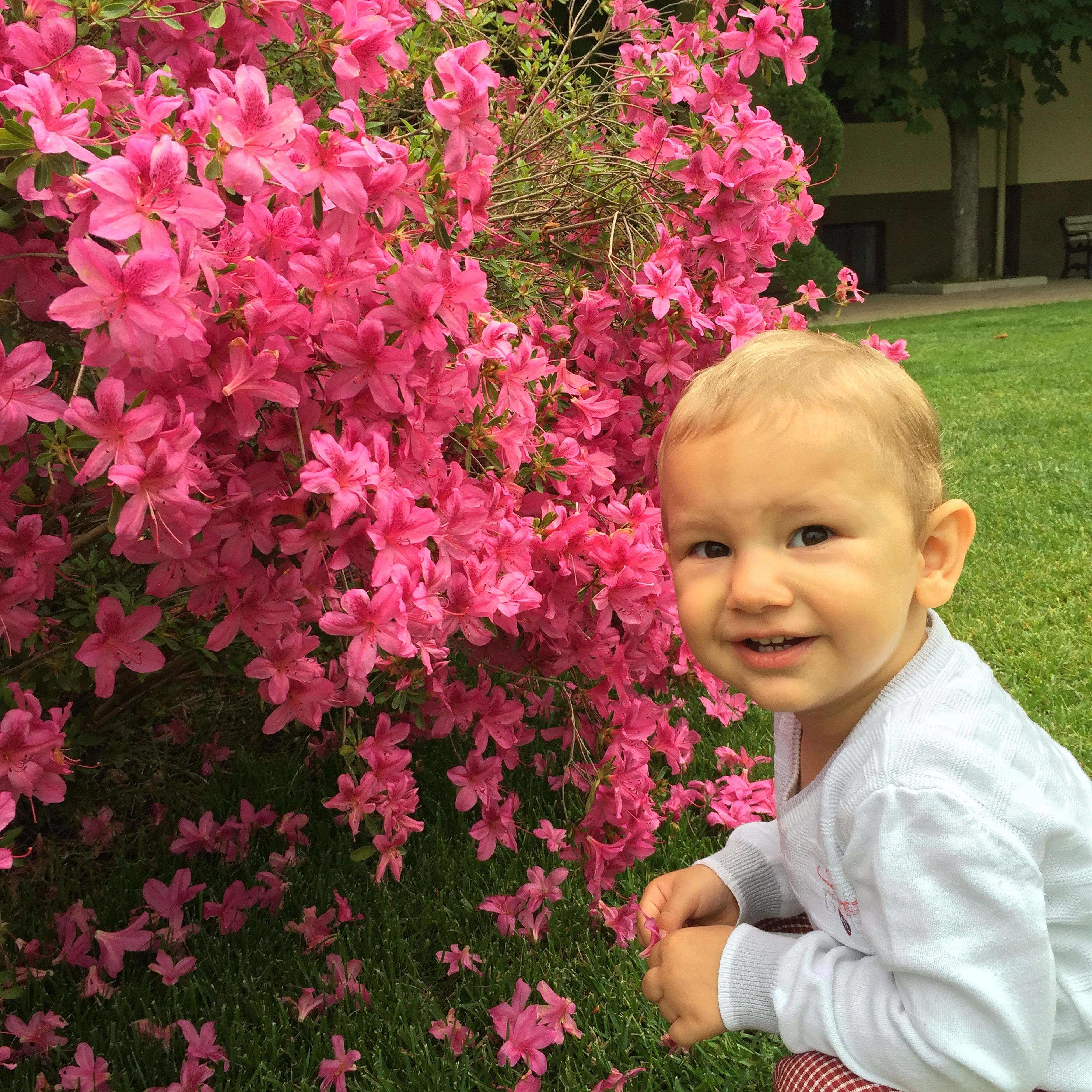 person, childhood, elementary age, innocence, flower, cute, looking at camera, portrait, lifestyles, casual clothing, girls, smiling, pink color, leisure activity, front view, boys, happiness, freshness