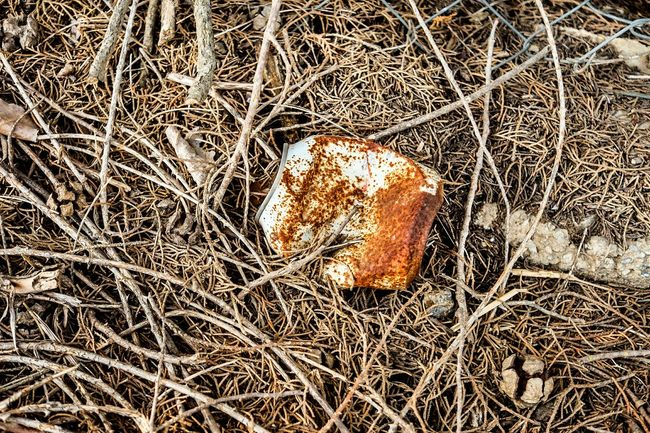 Soda Can High Angle View Close-up Nature Rusty Color Textures And Surfaces Suburbia Outdoors Things I See Fragments Of Life Open Edit