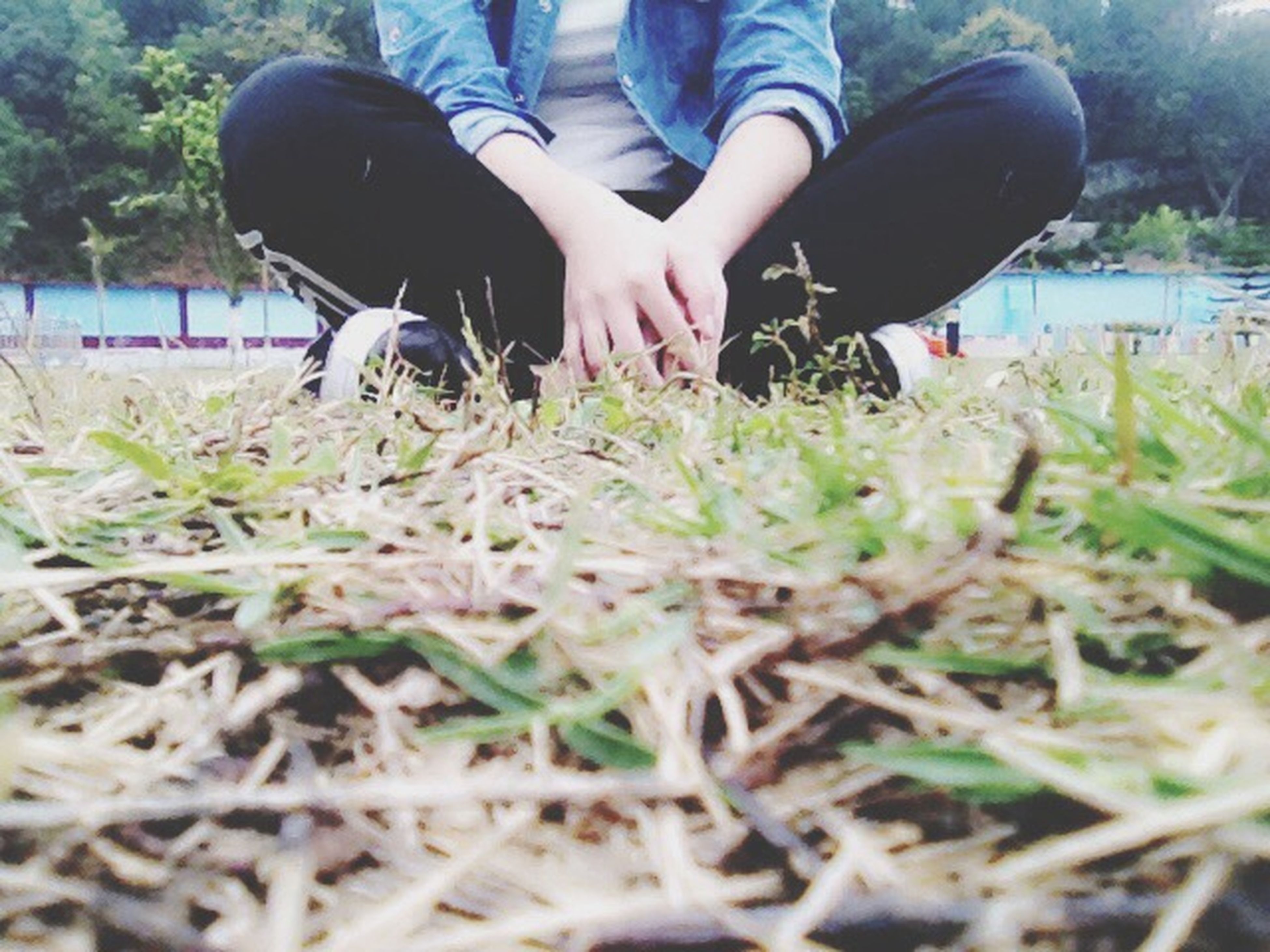 low section, person, lifestyles, grass, leisure activity, shoe, field, human foot, men, childhood, standing, unrecognizable person, footwear, casual clothing, grassy, selective focus
