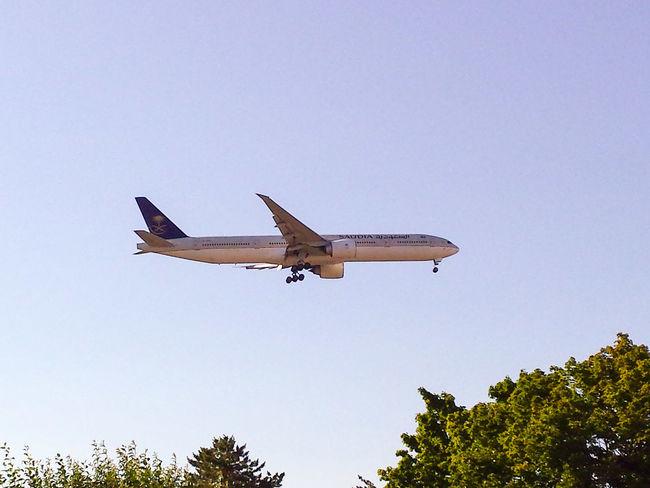 Sky Airplane Aircraft Airport Landing Transportation Air Vehicle Airport Runway Big Bird Ready To Land