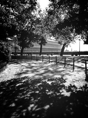 Buscando la sombra The Minimals (less Edit Juxt Photography) Landscape Don't Be Square Blackandwhite