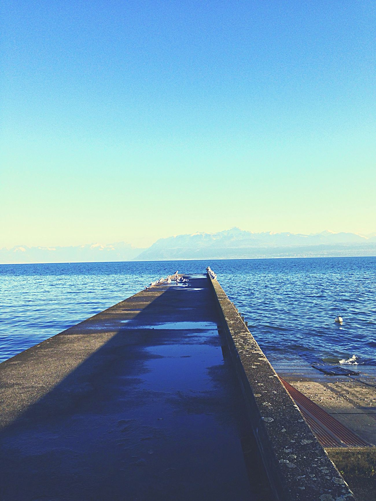 Good day ? ! Lake View Blue Sky Peoplephotography EyeEm Best Shots Switzerland Goo Follow Me