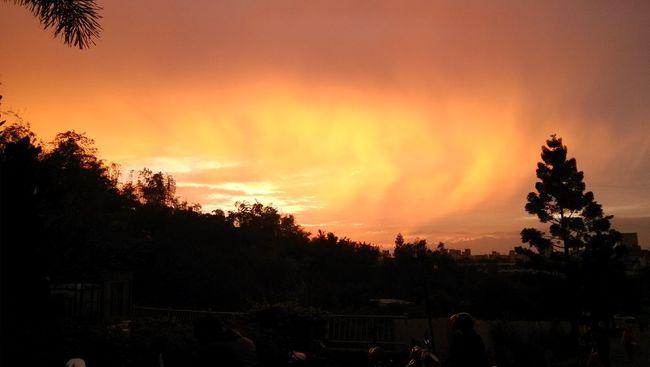 午後的美麗景象 美麗 景象 大自然的颜色最美。午後