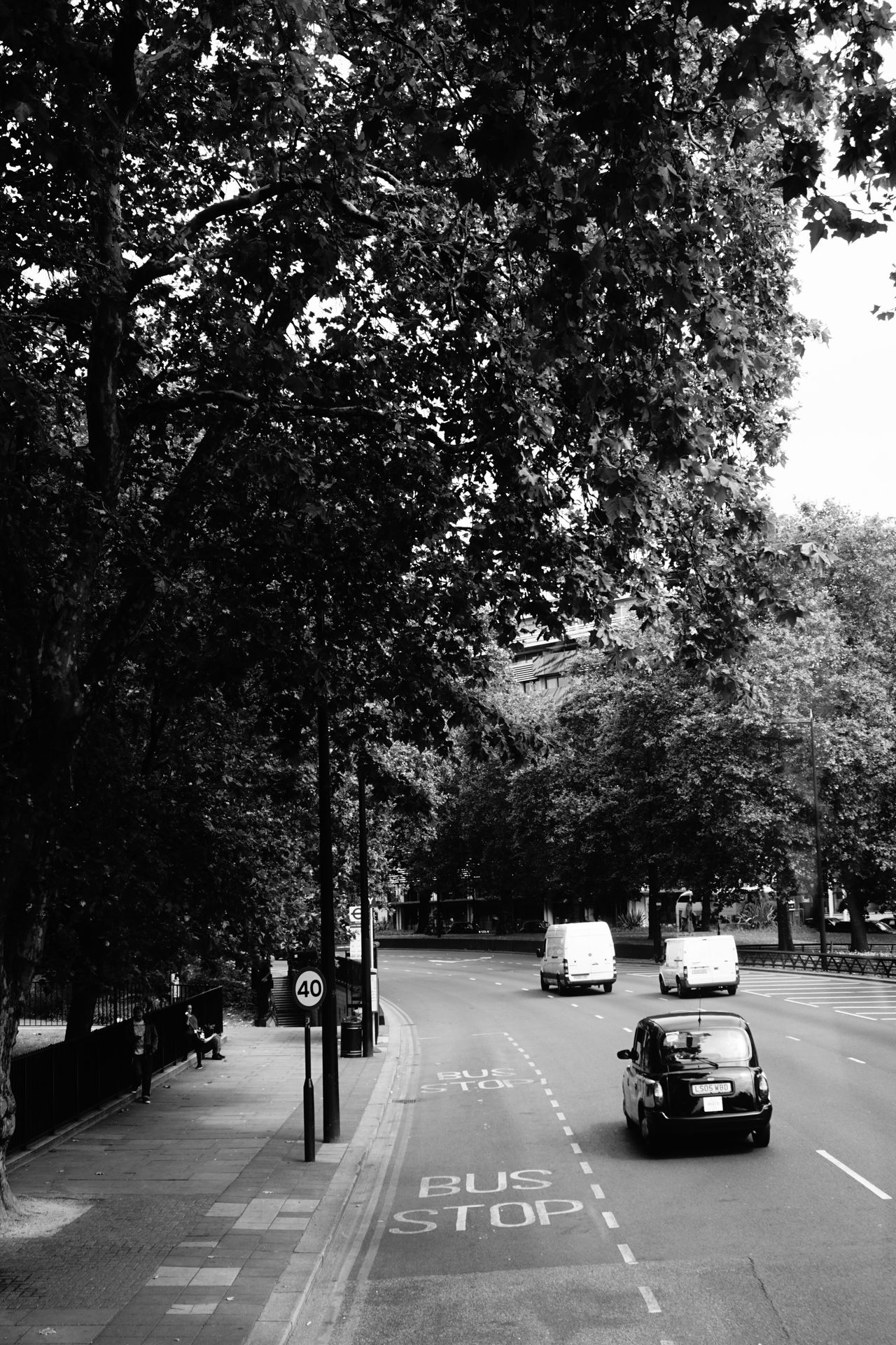 Travelling in London. View From Bus Window from double decker bus London Blackcab London Cab Bus Lane Trees Black And White Black & White Cars City Life City Street City Of London City View  Bus View England, UK