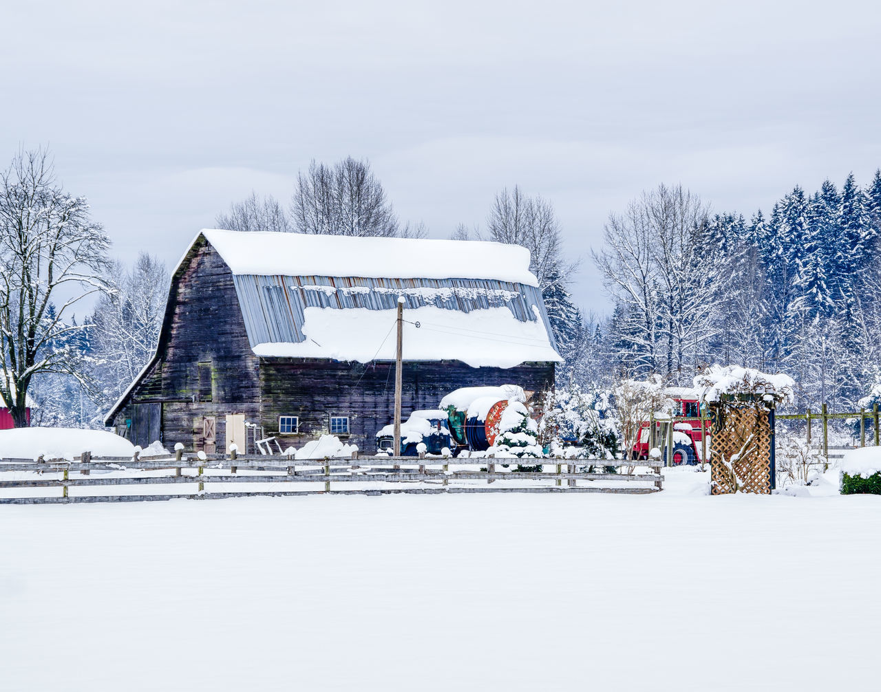 Architecture Bare Tree Barn City Cold Temperature Day Farm Life Frozen Frozen Water Ice Ice Rink Nature Outdoors People Polar Climate Sky Snow Snowflake Snowing Travel Destinations Tree White Color Winter Winter Sport