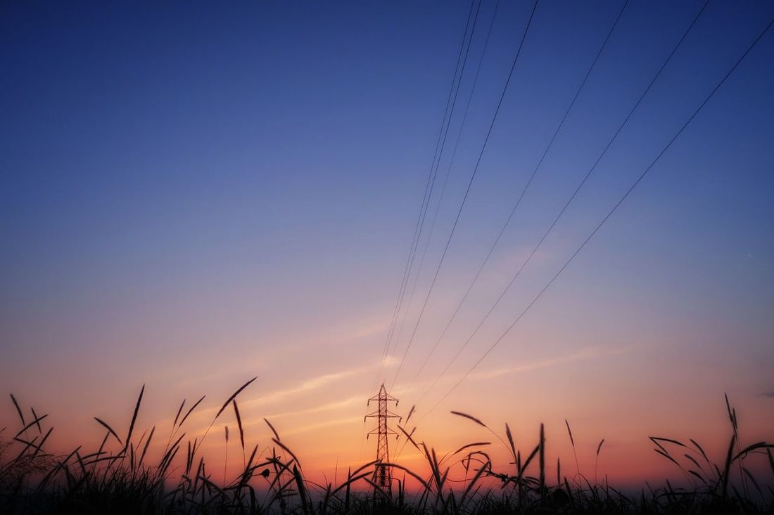 朝チャリ 朝 日の出前 朝焼け 鉄塔 高圧鉄塔 高圧送電線 グラデーション 空 いま空 EyeEm Nature Lover EyeEm Best Shots Nature Beauty In Nature Dramatic Sky Beauty Steeltower Sky 青空 イマソラ Gradation Silhouette Sunset Good Morning Morning Sky