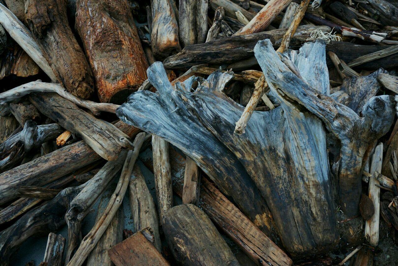 Pile of driftwood. Driftwood San Juan Island Islands