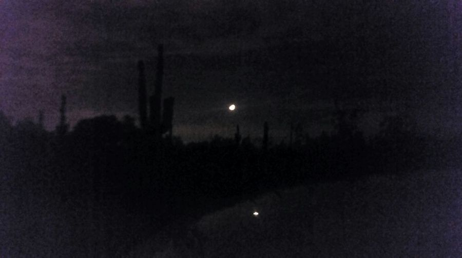 Out in the desert last night. The Moon was showing its Reflection on the top of ny car. The Purist (no Edit, No Filter) Cactus Silhouettes were eveeywhere. It was Peaceful and Quiet . I was Enjoying The Veiw  but Feeling Lonely and Missing My Baby  .